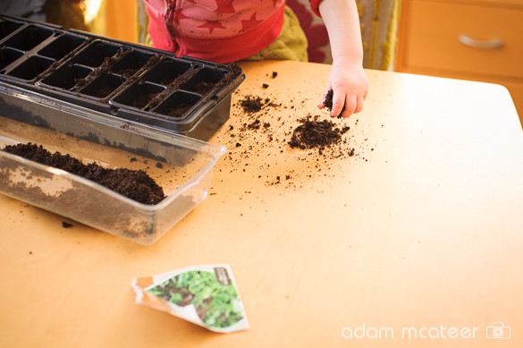 Planting seeds (6/6)