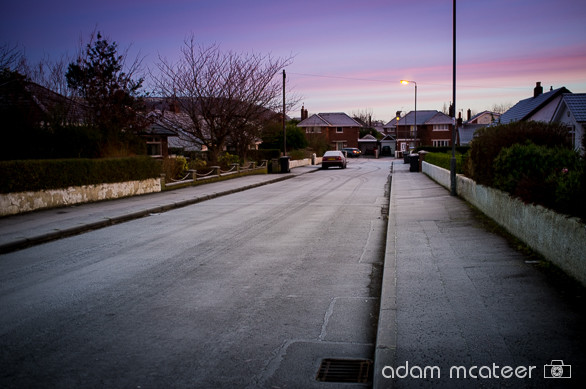 20140114_frost-2491