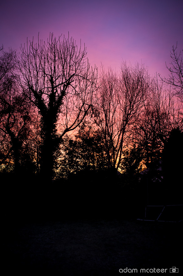 20140114_frost-2495