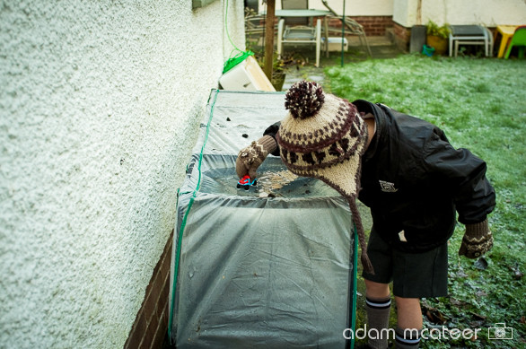 20140114_frost-2498