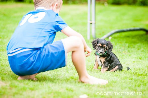 20140714_sox_the_dog-5933