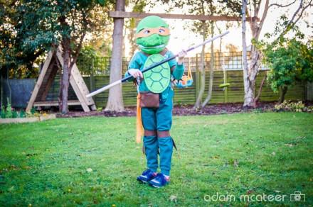 20141024_turtle-9434