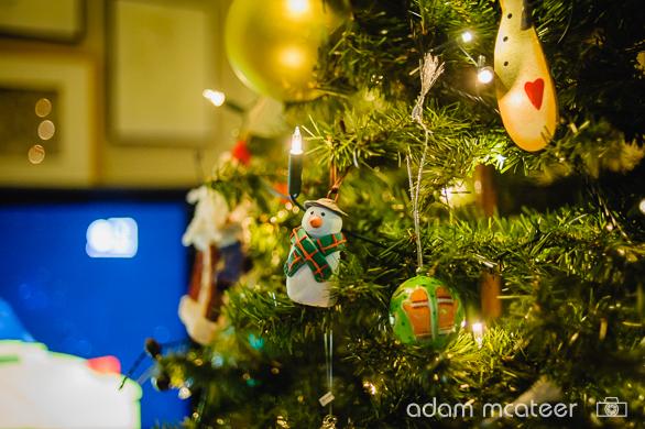 20141130_christmas_tree-0002-12