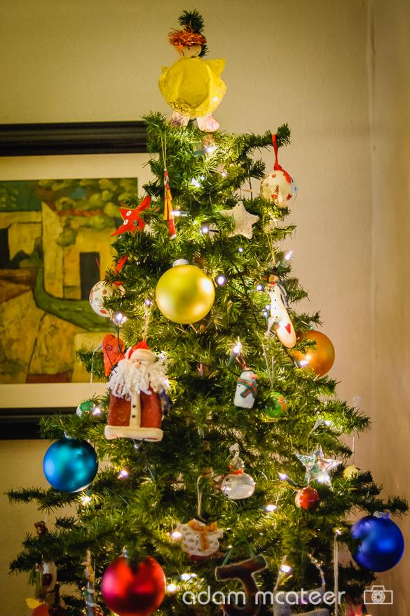 20141130_christmas_tree-0004-13