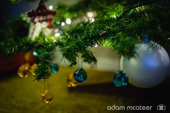 20141130_christmas_tree-0007-14