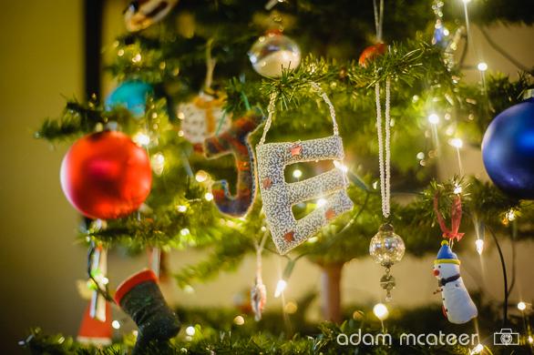 20141130_christmas_tree-9993-5
