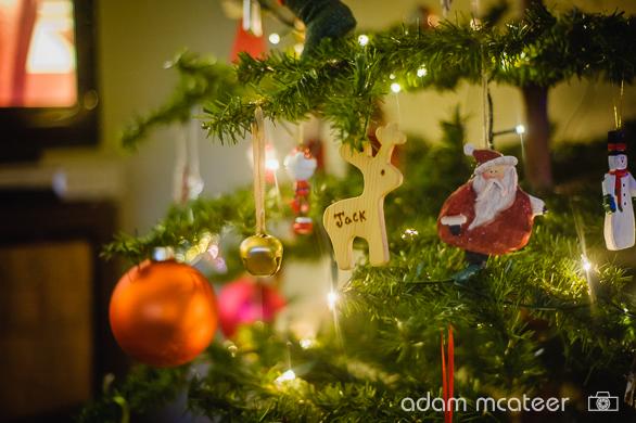20141130_christmas_tree-9994-6