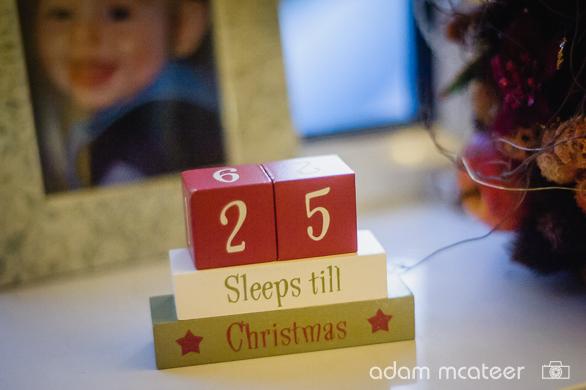 20141130_christmas_tree-9998-9