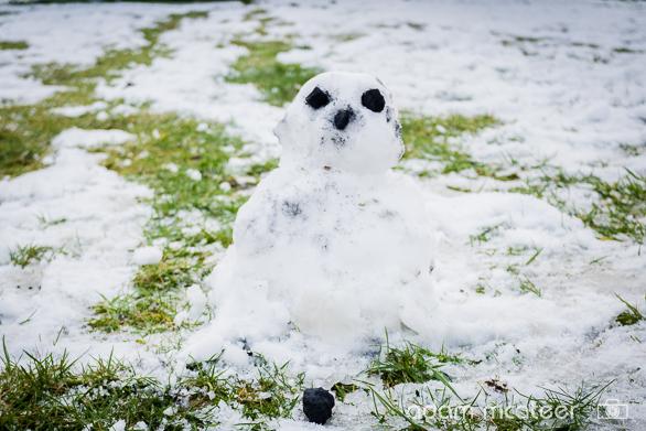 20150302_snow-1030500-9